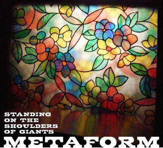 metaformfb3.jpg